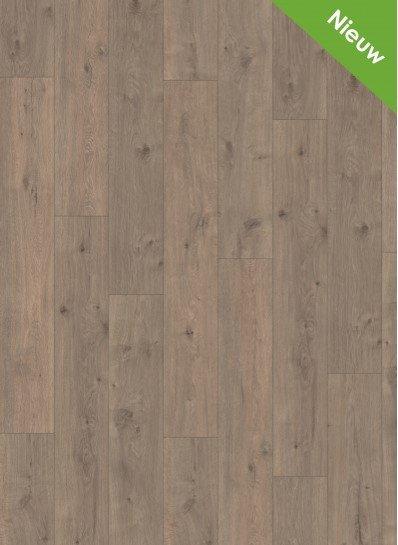 Panthera 2833 Nairobi Oak